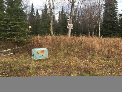 Soldotna Residential Lots & Land For Sale: Tr 3 Upper Rosian Drive