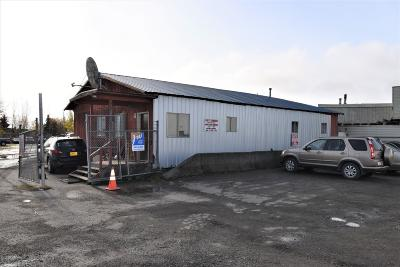 Anchorage Commercial For Sale: 340 E 95th Court