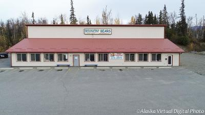 Wasilla AK Commercial For Sale: $740,000