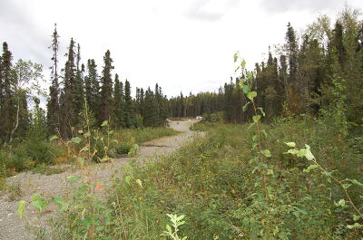 Wasilla Residential Lots & Land For Sale: 9778 Rosehill Road
