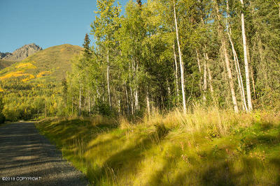 Anchorage, Chugiak, Eagle River Residential Lots & Land For Sale: L9 Twin Peaks Drive