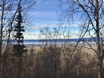 1a - Anchorage Municipality Residential Lots & Land For Sale: B1 L14 Diana Circle