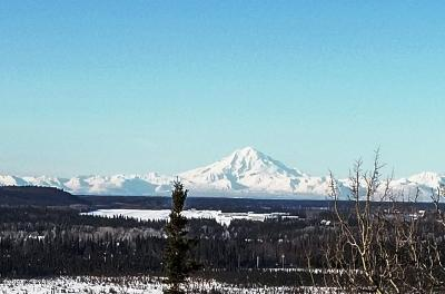 Soldotna Residential Lots & Land For Sale: 40495 Grande Heights Drive