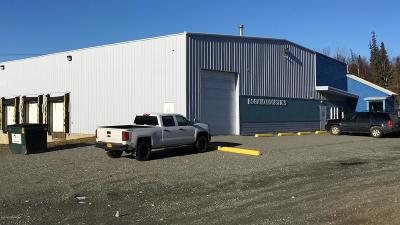 Wasilla Commercial For Sale: 4721 E Bogard Road