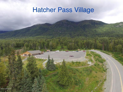 Palmer Residential Lots & Land For Sale: 7350 Narnia Circle
