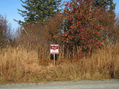 Anchor Point Residential Lots & Land For Sale: 72278 Valleyside Avenue