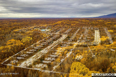 Palmer Residential Lots & Land For Sale: L3 B6 Herman Avenue