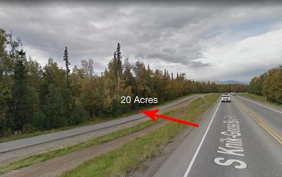 Wasilla Residential Lots & Land For Sale: 3241 Caryshea Street