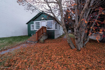Anchorage Commercial For Sale: 238 E 6th Avenue