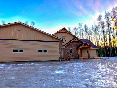 Wasilla Single Family Home For Sale: 9646 W Aircraft Court