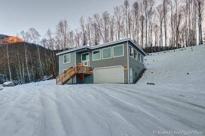 Chugiak Single Family Home For Sale: 19816 Tulwar Drive