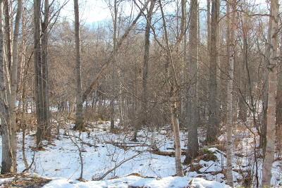 1d - Matanuska Susitna Borough Residential Lots & Land For Sale: 15650 Clark-Wolverine Road