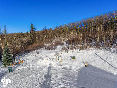 Anchorage Residential Lots & Land For Sale: 18509 Potter Glen Circle