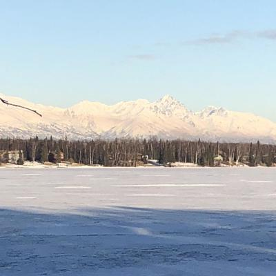 Wasilla Residential Lots & Land For Sale: 1501 Tillicum Avenue