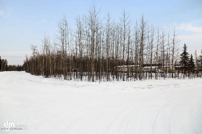 Big Lake Residential Lots & Land For Sale: 15002 Rocky Lake Drive