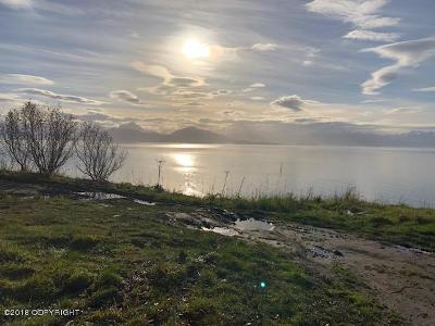 Homer, Anchor Point, Ninilchik, Seldovia, Halibut Cove Residential Lots & Land For Sale: 1429 Sterling Highway