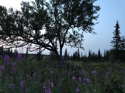 Anchor Point Residential Lots & Land For Sale: Tall Tree