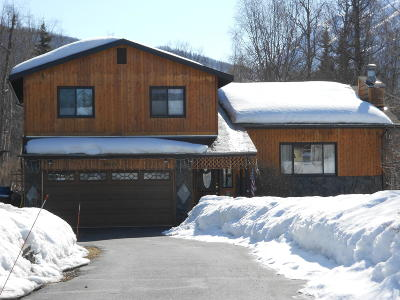 Chugiak Single Family Home For Sale: 21675 Sheltering Spruce Loop
