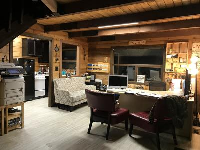 Soldotna Single Family Home For Sale: 43580 Whistle Hill Loop