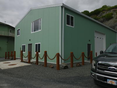 1c - Kodiak Island Borough Commercial For Sale: 8200 W Rezanof Drive