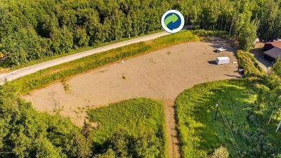Wasilla Residential Lots & Land For Sale: 2921 Davis Road