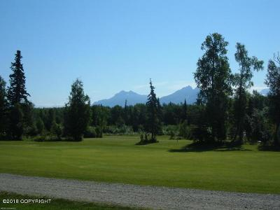 Wasilla Residential Lots & Land For Sale: 7606 Frontier Drive