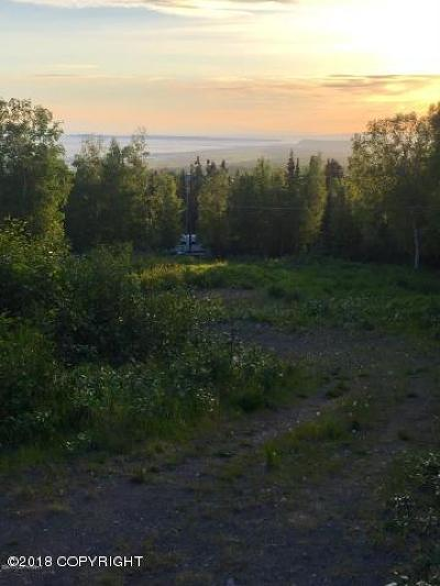 Anchorage, Chugiak, Eagle River Residential Lots & Land For Sale: 16000 Elizabeth Street