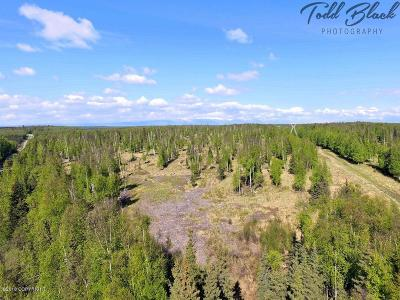 Wasilla Residential Lots & Land For Sale: 10429 Lewis Loop & 10645