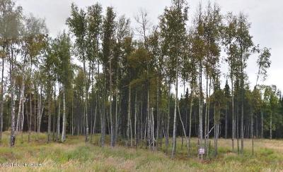 Wasilla Residential Lots & Land For Sale: 4564 Gold Mint Drive