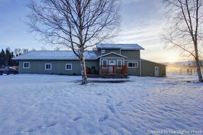 Wasilla Single Family Home For Sale: 4700 Sasbo Bluff Loop