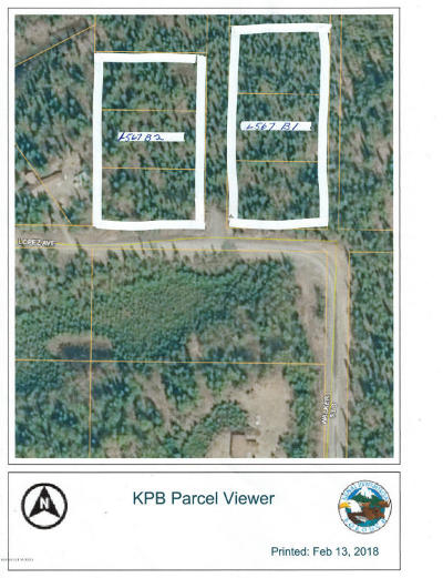 Soldotna Residential Lots & Land For Sale: L5-7 B1 Lopez Avenue
