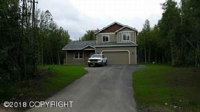 Wasilla Single Family Home For Sale: 1841 S Carr Street