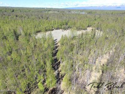 Wasilla Residential Lots & Land For Sale: 831 Adson Road