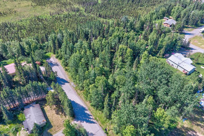 Kenai Residential Lots & Land For Sale: 260 Fern Street