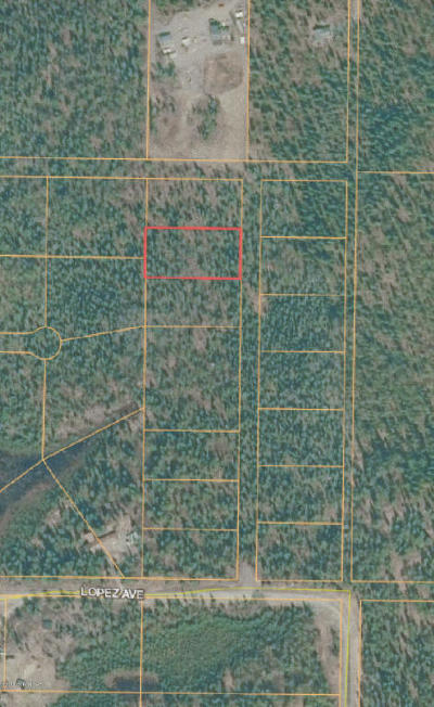 Soldotna Residential Lots & Land For Sale: L2B2 CHARLES Street