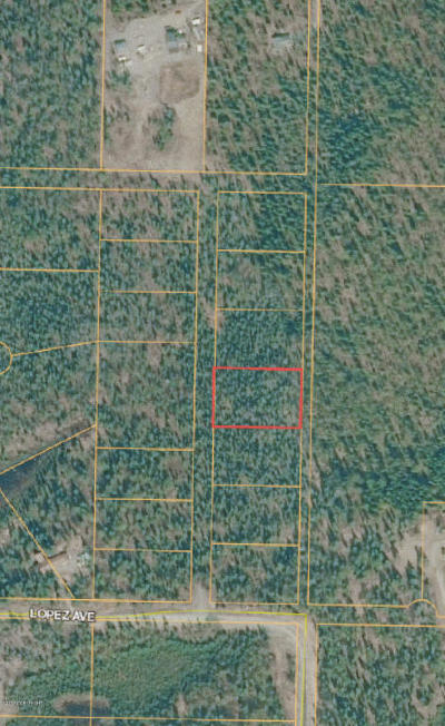 Soldotna Residential Lots & Land For Sale: L4B1 CHARLES Street