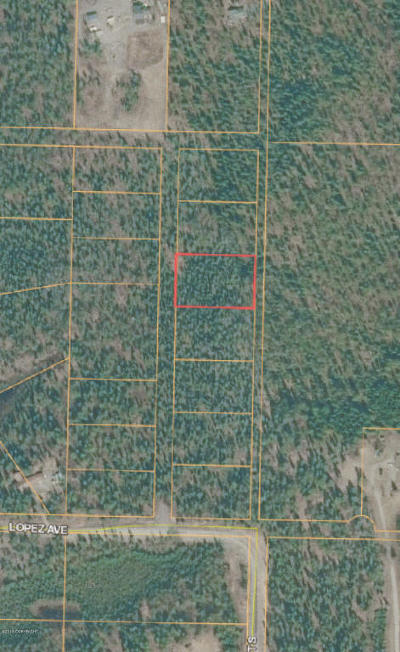 Soldotna Residential Lots & Land For Sale: L3B1 CHARLES Street