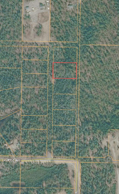 Soldotna Residential Lots & Land For Sale: L2B1 CHARLES Street