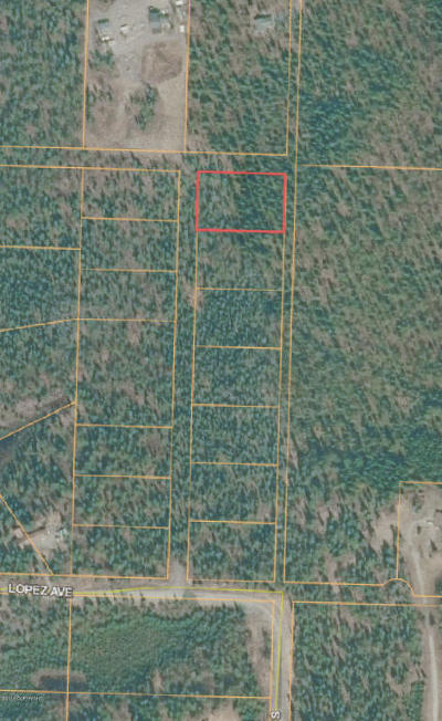 Soldotna Residential Lots & Land For Sale: L1B1 CHARLES Street