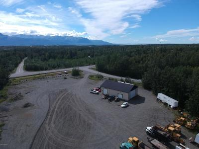 Wasilla Commercial For Sale: 6841 E Weswood Drive
