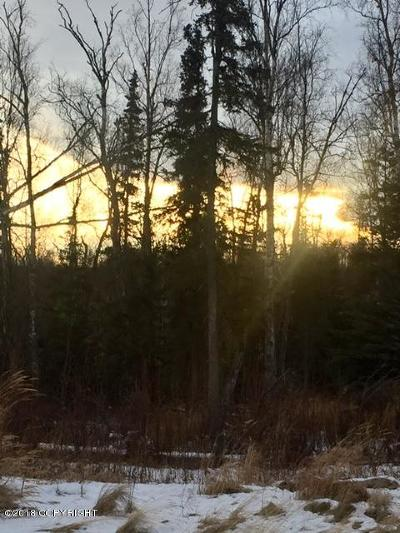 Wasilla AK Residential Lots & Land For Sale: $59,950