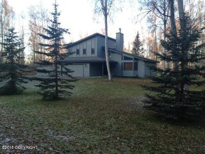 Chugiak Single Family Home For Sale: 24865 Thunderbird Drive