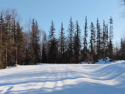 Wasilla Residential Lots & Land For Sale: Tr A Highland Drive