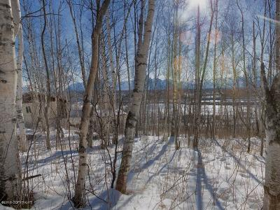 Wasilla AK Residential Lots & Land For Sale: $70,000