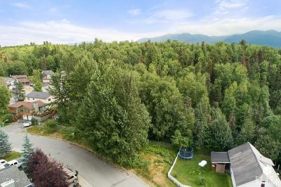 Anchorage Residential Lots & Land For Sale: L24 Image Drive
