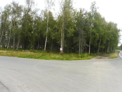 Wasilla Residential Lots & Land For Sale: 8064 Snowy Pass Circle Circle