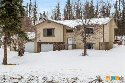 Wasilla Single Family Home For Sale: 160 W Gail Drive