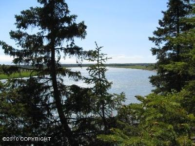 Kenai Residential Lots & Land For Sale: 1300 Cunningham Court