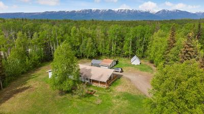 Wasilla Single Family Home For Sale: 1051 E Northstar Circle