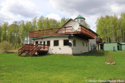 Wasilla Single Family Home For Sale: 3667 N One Horse Lane